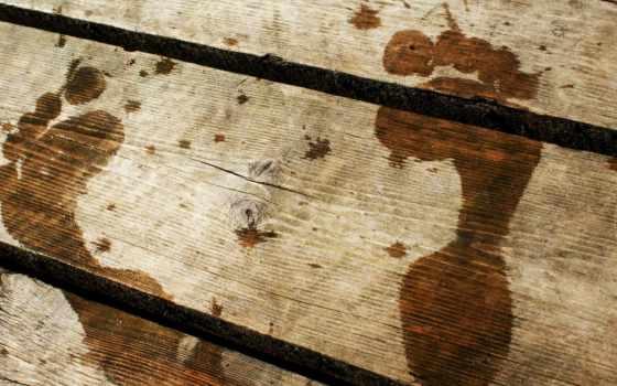 traces, мокрые, nog, деревянном, мостике, wood, мост, песок,