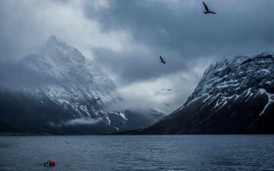норвегия, mountains, природа, desktop, изображение, bakin, birds,