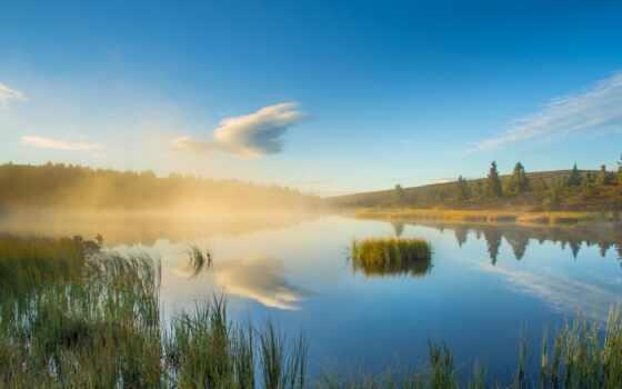 ,лес, озеро, отражение, природа, дымка,