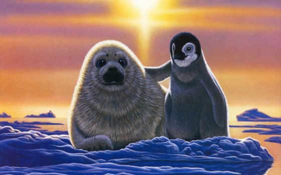 рисунки, пингвины, клипарт
