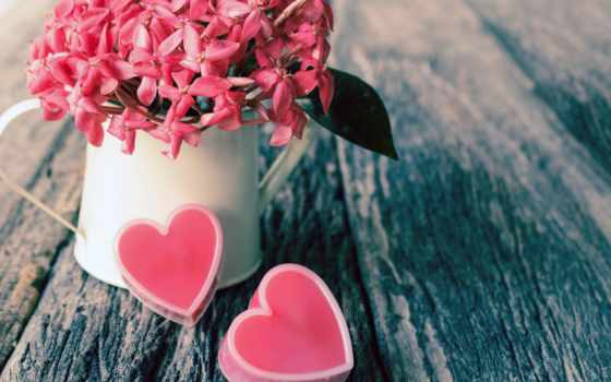 день, valentine, flowers, happy, you, цветы, valentines,