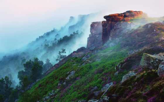 утро, туман, гора, early, лес, трава, flowers, landscape, скалы,