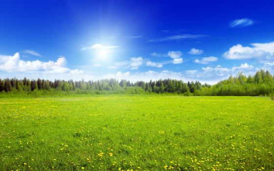 landscape, луга, природа, картинка, небо, поле, фотообои, живые, озеро, trees, summer,