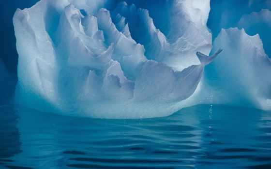 интернете, без, вложений, iceberg, заработок, inside, get,