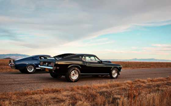 mustang, ford, shelby, car, tumblr, race, drag, muscle, lunchbox, fastback,