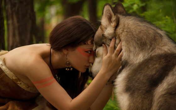 волк, devushka, les