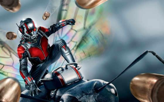 marvel, мужчина, ant