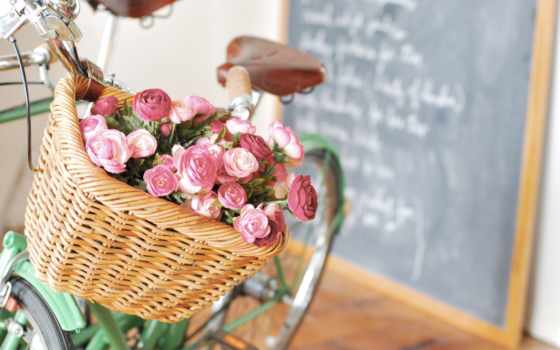 cvety, корзина, bike, розы, доска, корзине, роза,