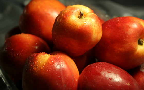 яблоки, плод, оранжевый, drop, телефон, еда, water