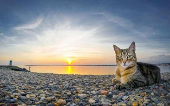 галька, закат, море