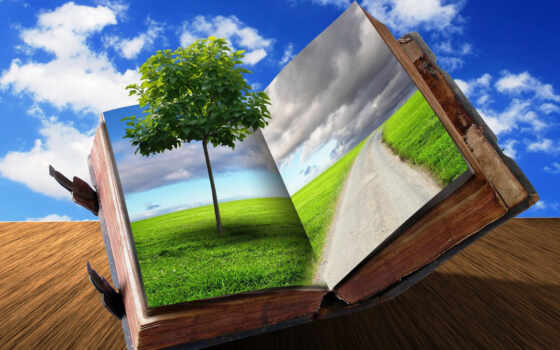книга, открытая, дерево, дорога, креатив, трава, oblaka, дорогой, деревом, поле,