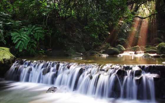 водопад, водопады, природа, trees, река, мох, лес,