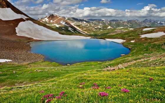 природа, трава, landscape