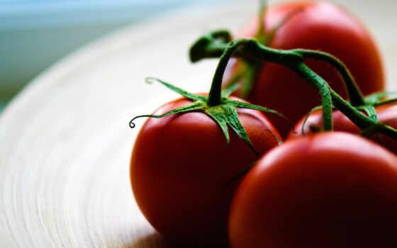 макро, еда, помидоры