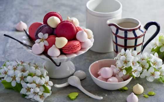 ,, цветок, посуда, чашка, флористика, кофейная чашка, лепесток, срезанные цветы, миндальное печенье, macaron, десерт, утро,, завтрак, кондитерские изделия