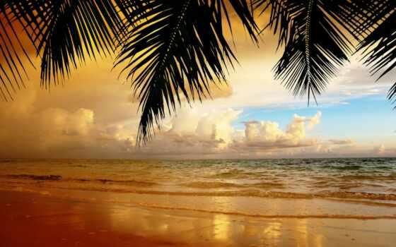 пляж, landscape, песок