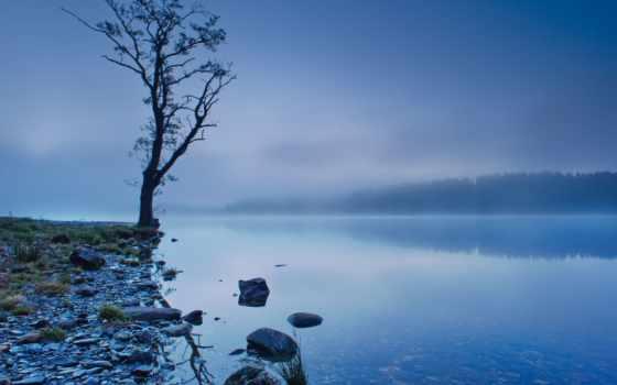 scotia, природа, озеро, шотландия, туман,