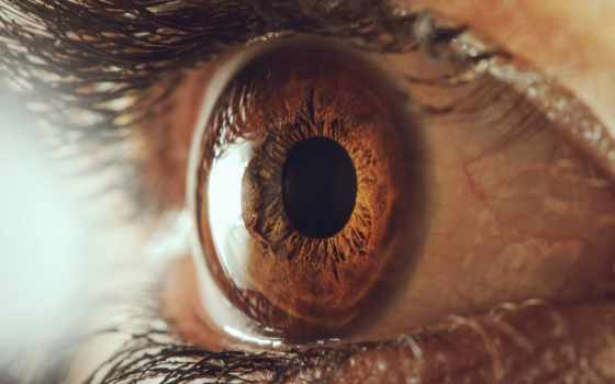 глаз, ресницы, зрачок, human, макро, тело, touch, картинка, images,
