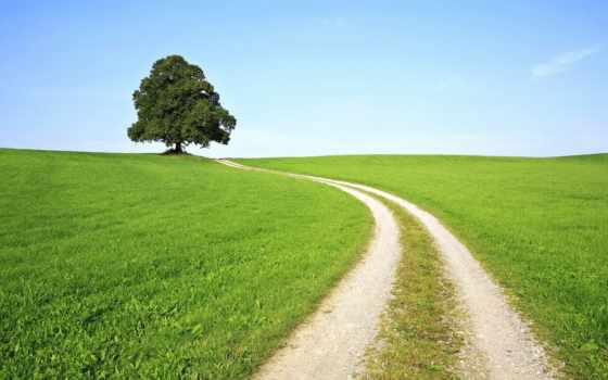 трава, дорога, тропинка, зелёный, roads, природа, red, peaceful,