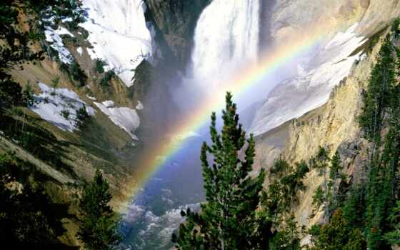 del, радуга, природа, human, красивый
