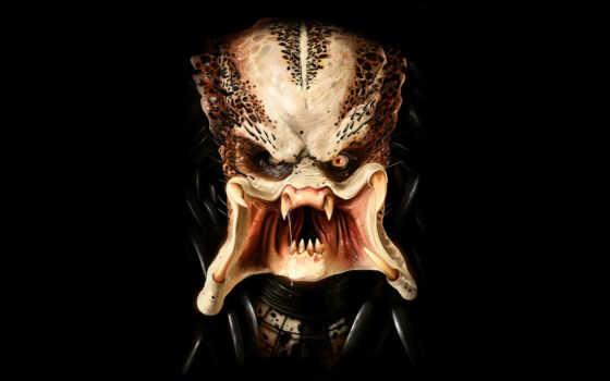 predator, wallpapers, and, хищник, обои, backgroun