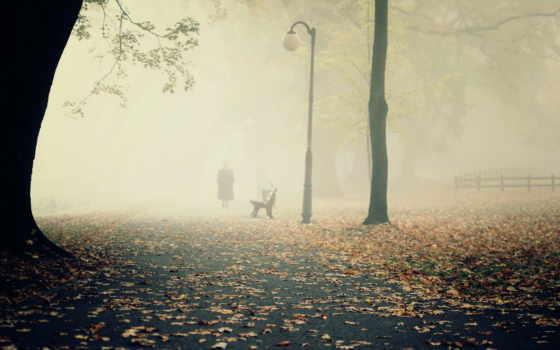 пейзаж, туман
