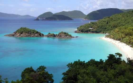 bay, пляж, john, остров, ствол, usvi, tropical, ocean, sahil, manzarası,