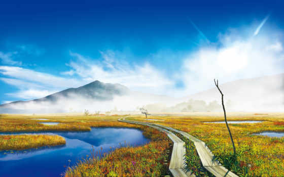 гора, тропинка, болото, светлые