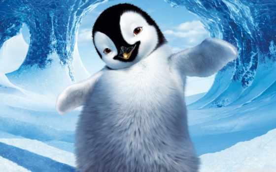 пингвин, делай, ноги