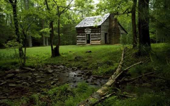 лесу, lodge, house, деревенская, лес, тематика, possible, банка,