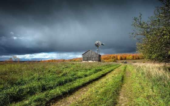 house, ферма, трава