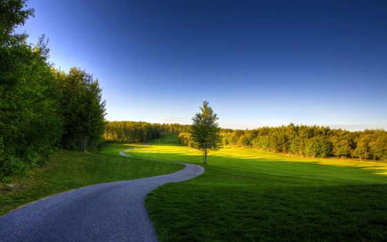 природа, summer, фоны, коллекция, пользователя, trees, страница, яndex, фотошопа,