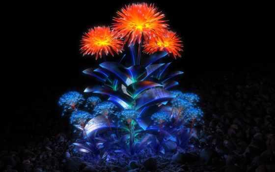 cvety, fone, темном, puzzle, online, светящиеся, оранжевые, gostei, ждем,