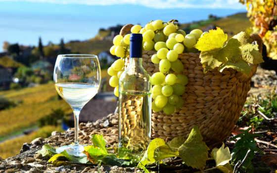вино, шардоне, винограда, белого, картиники, бесплатные, море, вина,