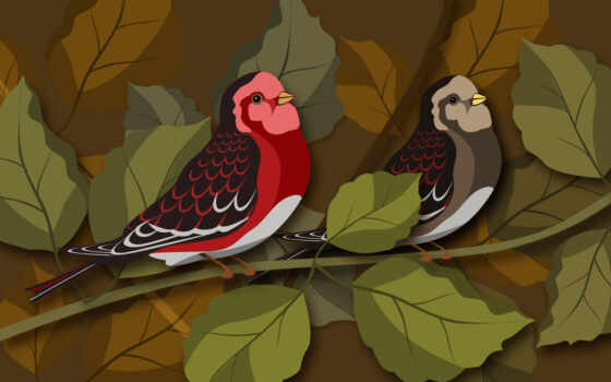 birds, psd, illustration, vector, download, material, layered, birdies,