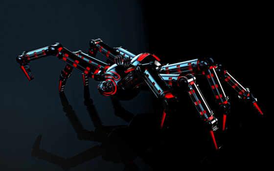 паук, свет, взгляд