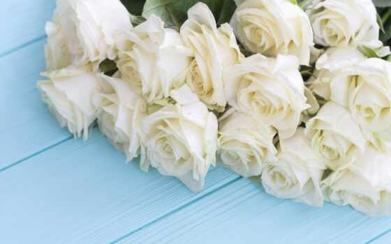 цветы, gullar, роза, букет, гуль, дерево