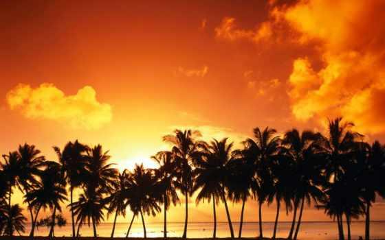 пляж, летом, отдых