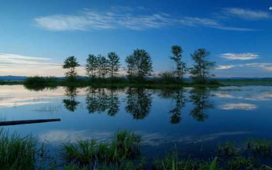 природа, музыка, amazing, video, маленькая, tosi, gabriele, play, youtube, taiwan,
