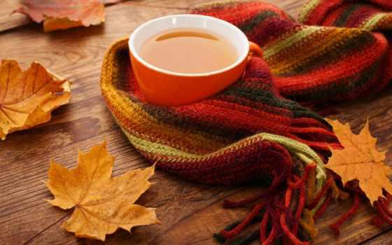 осень, coffee, чая, liveinternet, осенью, вкус, корицы,