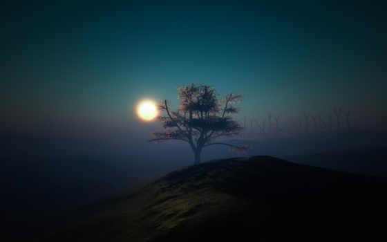 , гора, дерево, утес,  закат