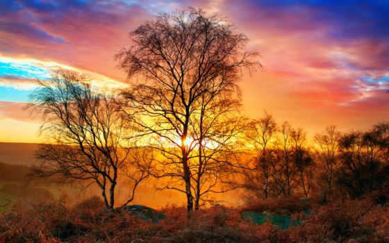 minor, mass, бах, enescu, закат, нь, природа, небо, kompüteriniz, landscape, sun,