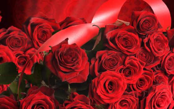 март, martha, qadınlar, красные, розы, красными, лентами, təbriki, gözəl,