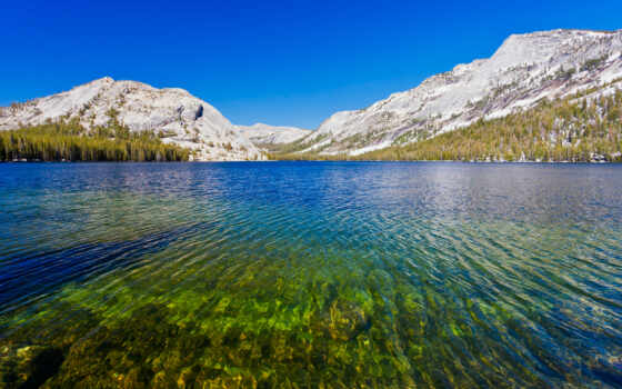national, park, озеро, yosemite, tenaya
