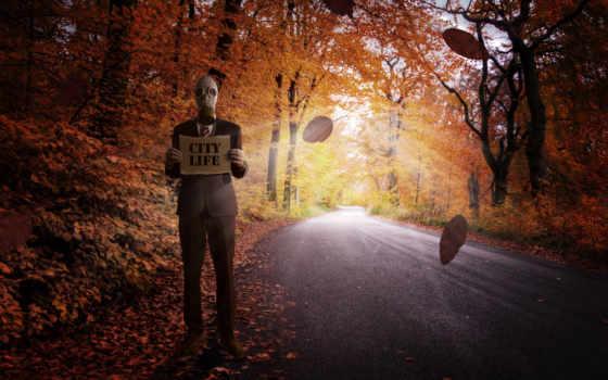 лес, осень, best, природа, resolutions, pathway, trees,
