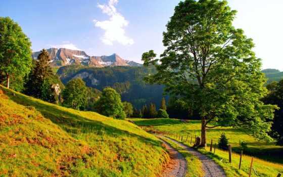 summer, горы, природа, альпы, дорога, swiss,