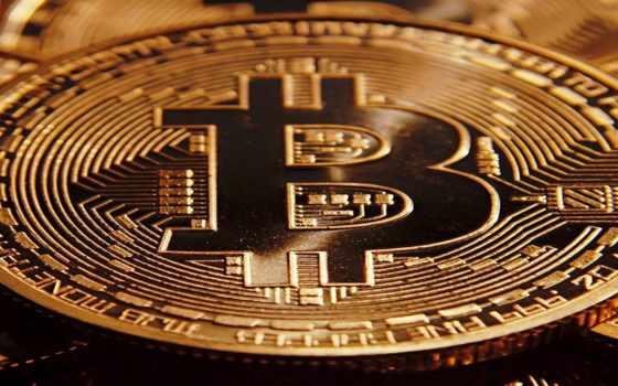 petro, moneda, criptomoneda