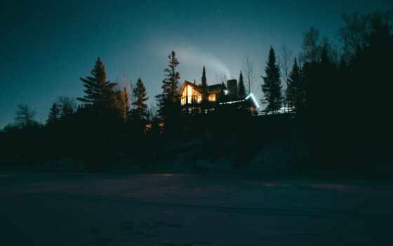 ночь, лес, starry, небо, убежище