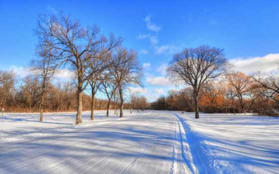 природа, лес, листе, капли, заставки, красивые, winter, снег,