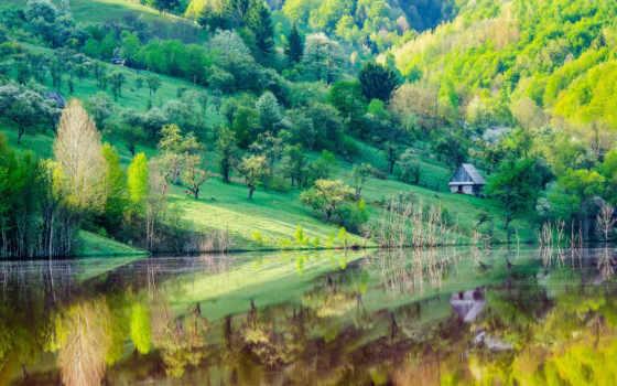 del, agua, paisaje, fondos, pantalla, rboles, con, montaña, orillas, cristalina,